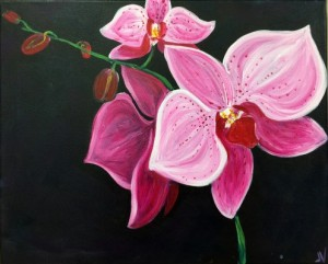 The-Orchid-496x400
