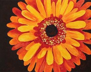 pink gerbera daisy design variation 1